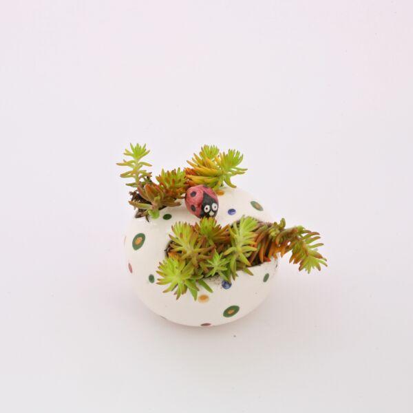 Virágtartó asztali pöttyös