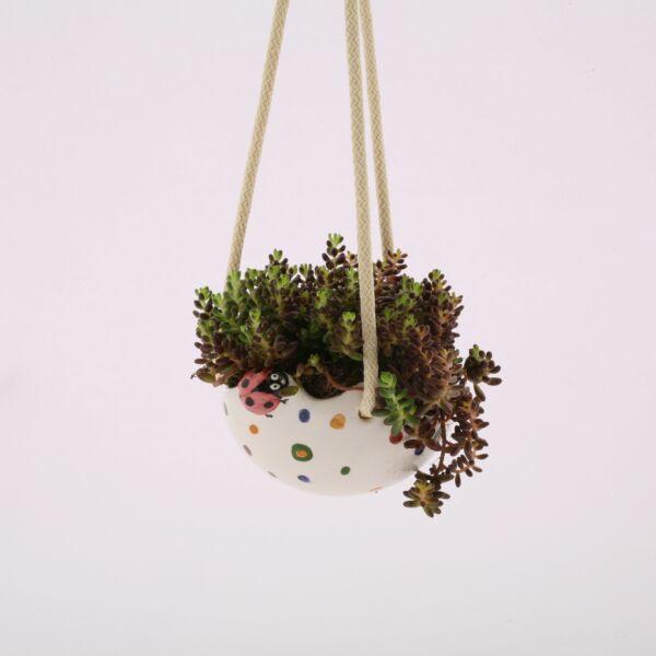 Virágtartó felfüggesztős félgömb pöttyös